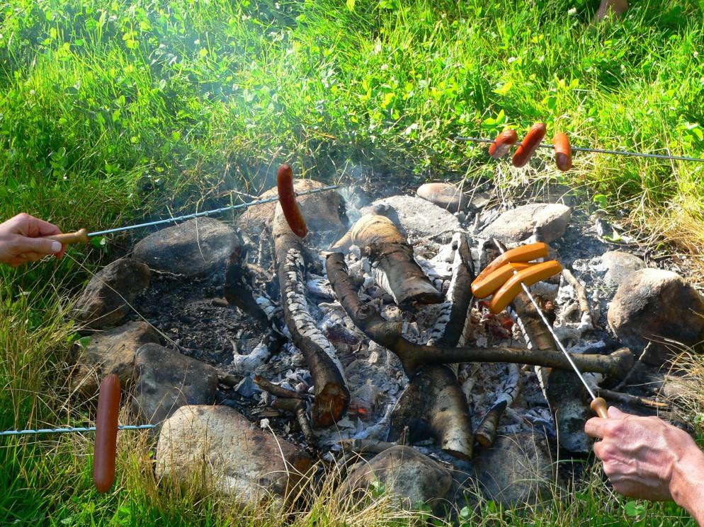 Wienie Roast, photo of wiener roasting party, RVjart.com