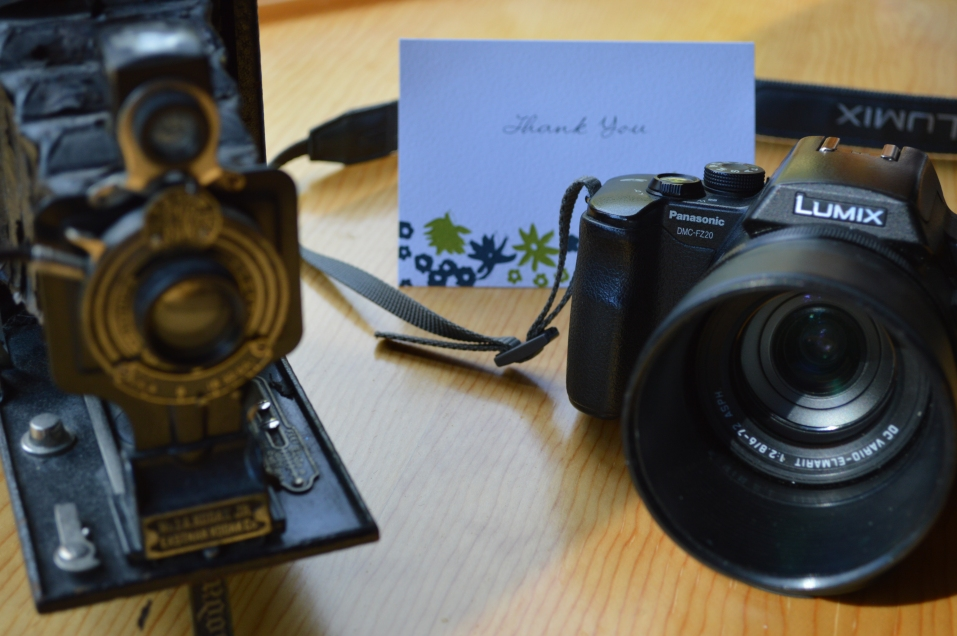 Thank you, photo of Panasonic DMZ-FZ20 camera, Roger Vincent Jasaitis, RVJart.com
