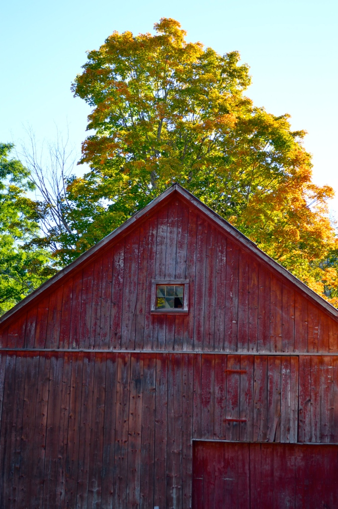 Townshend Barn, Photo by Roger Vincent Jasaitis, Copyright 2014, RVJart.com