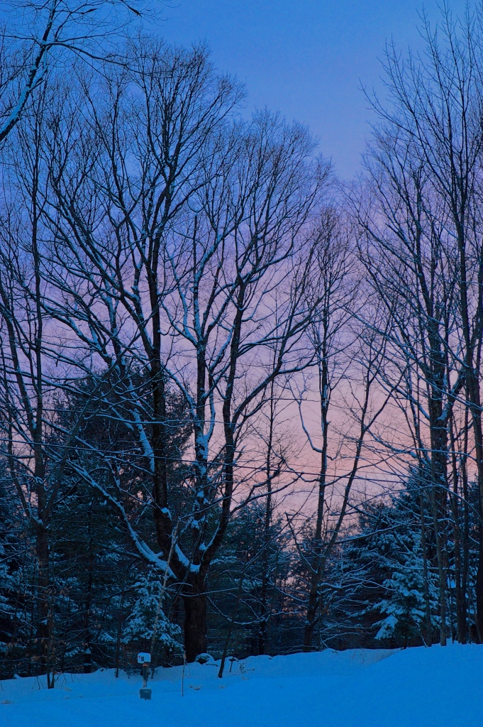 Winter Twilight, photo by Roger Vincent Jasaitis, copyright 2015, RVJart.com