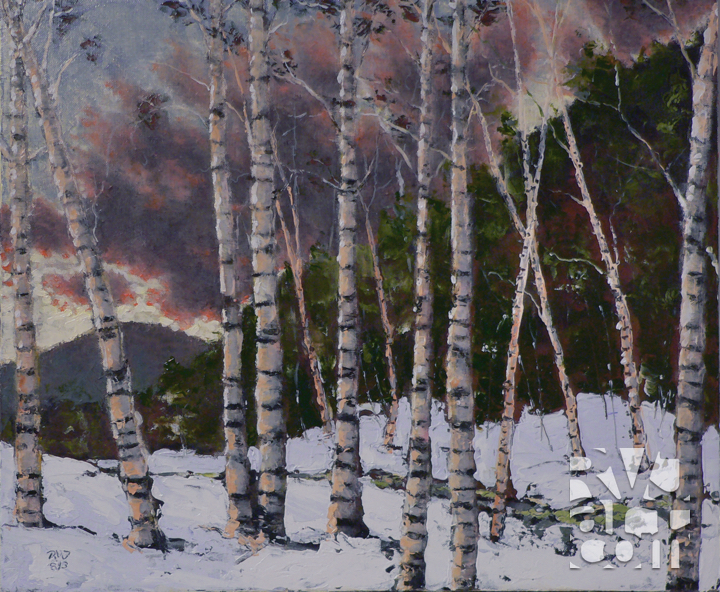 Sunset Birches, oil painting by Roger Vincent Jasaitis, copyright 2013, RVJart.com