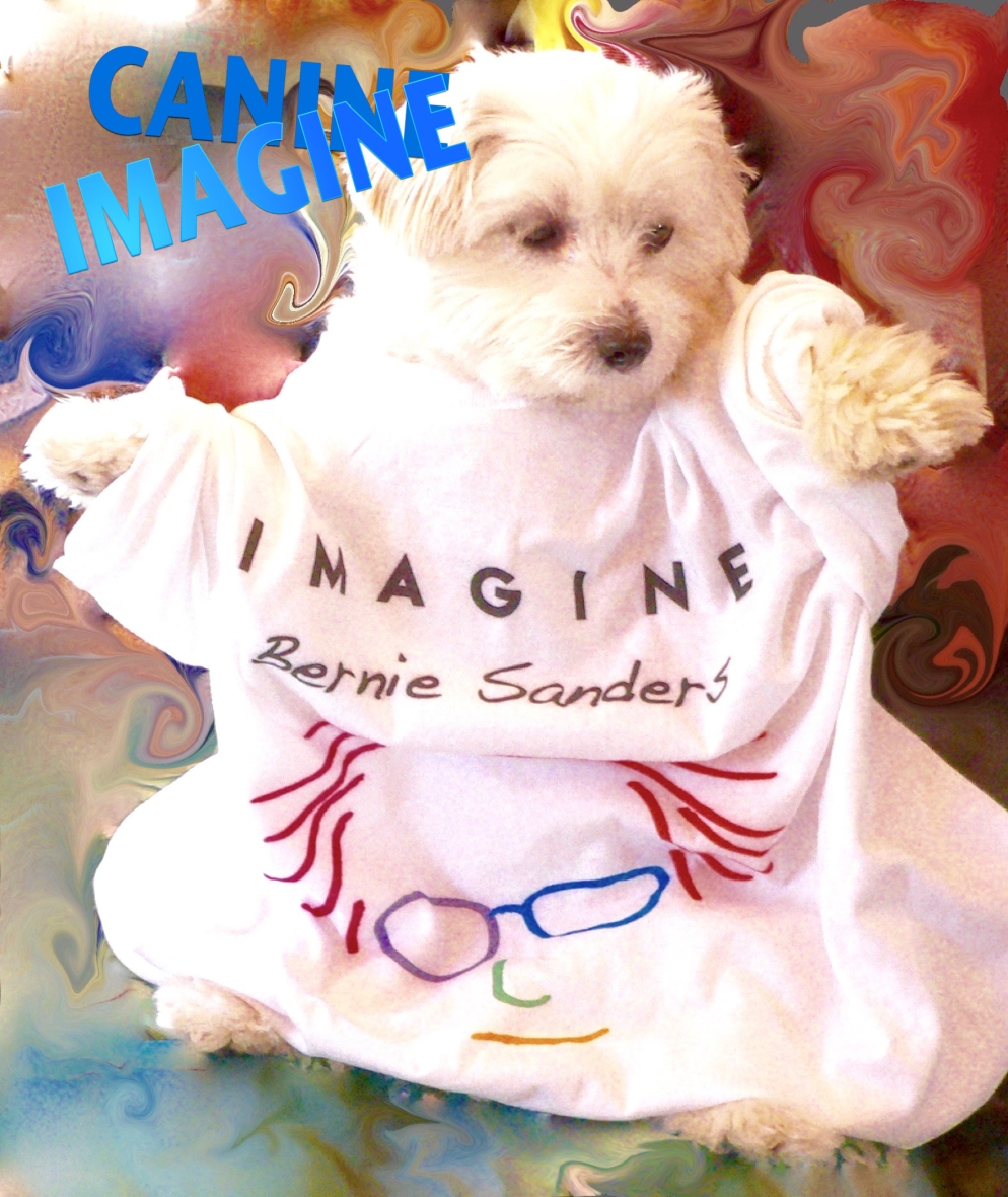 CANIMAGINE, artwork by Nancy Jane Lang, nancyjane lang.com, thanks to Mia for modeling. T-shirt by others...